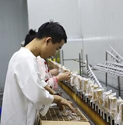 perfume bottle suppliers